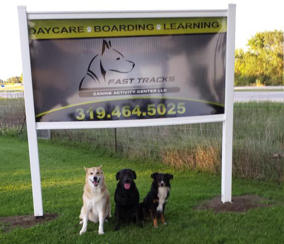 Professional Dog Day Care in Waterloo and Cedar Falls, LA